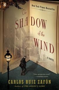 shadow of wind