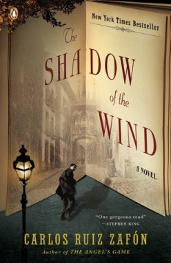 shadow of wind